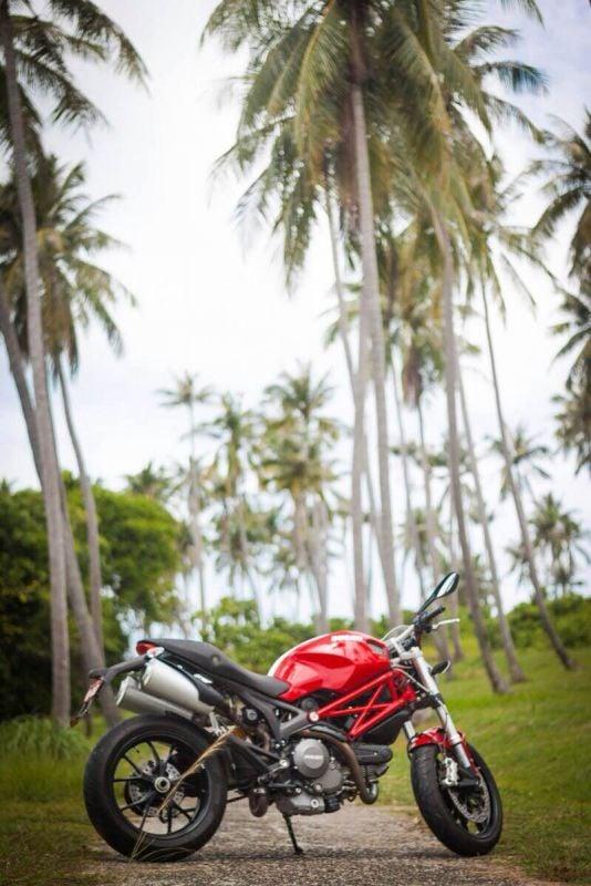 Sale Ducati Monster 796 ABS