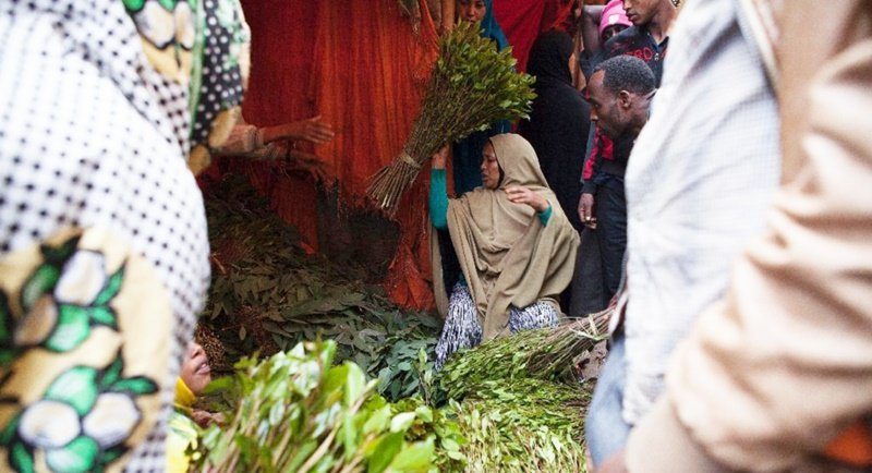 Somalia introduces khat ban