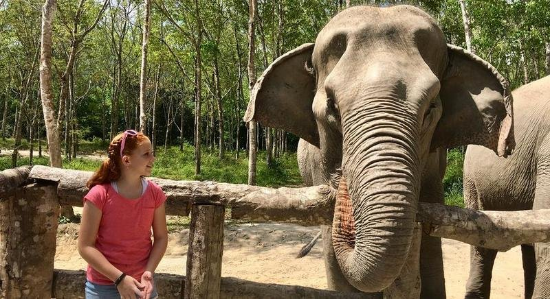 Millie from Australia and her family explore the Elephant Sanctuary and meet face to face with blind elephant Gaew Ta.