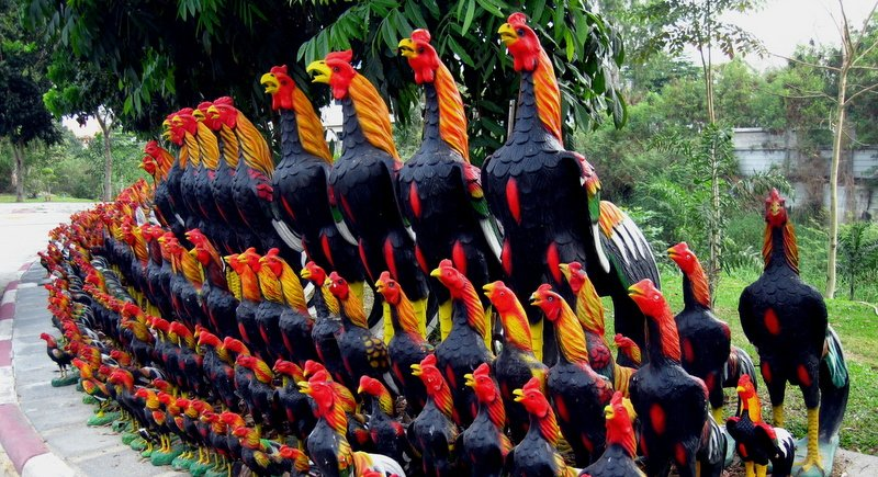 Roosters guard Naresuan's tomb. Photo: Sweetred