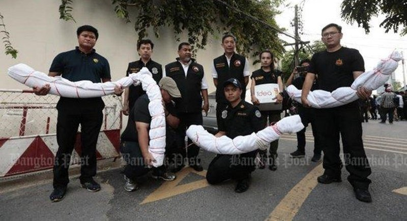 Elephant tusks seized under a court warrant from the Soi Soonvijai home of accused poacher Premchai Karnasuta on Feb 7 are from Africa. Photo: Patipat Janthong
