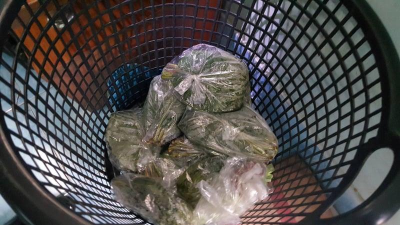 Bundles of kratom leaves were found in the house. Photo: Eakkapop Thongtub