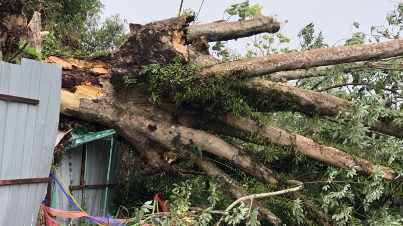 Phuket mops up after storm, damage cost rises