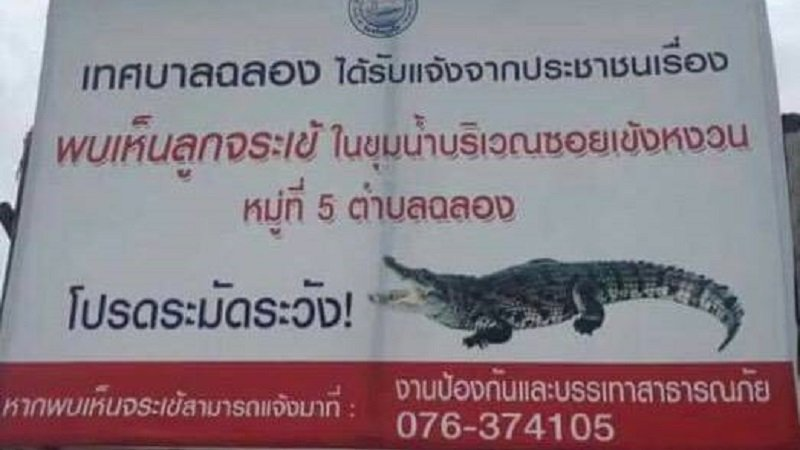 "A sign saying ""Beware of baby crocodiles – If you see one call 076-374105"" was intalled yearlier this year. Photo: Supplied"