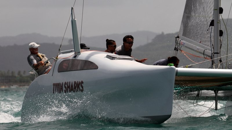 'Twin Sharks' will return to defend its Firefly champion's title. Photo: Scott Murray