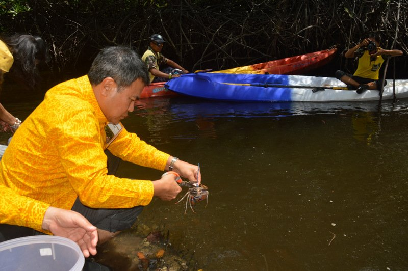 An estimated 6.4 million baby crabs were released during the event on Friday (July 20). Photo: PR Dept