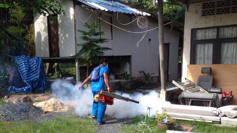 Spike in Phuket infections spur anti-Chikungunya offensive