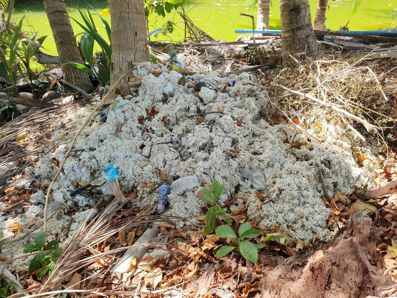 Dead corals were found piled up along the banks of the canal and on resort property. Photo: DMCR