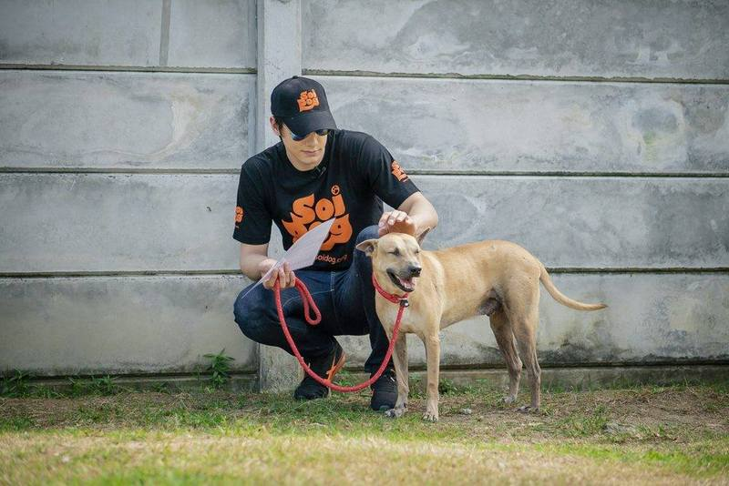 Thai-British actor Peter Denman has been nominated to be one of Soi Dog's Brand Ambassadors. Photo: Soi Dog Foundation
