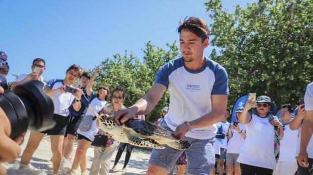 Seiko's Save the Ocean project heads to Koh Racha Yai