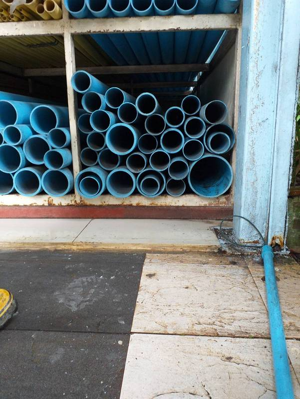 The monitor lizard was hiding among blue plastic water pipes at a shop in Patong. Photos: DDPM-Patong
