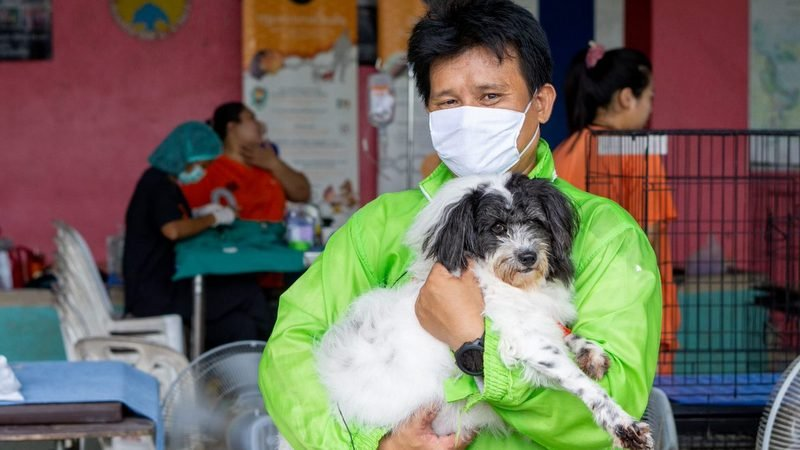 Soi Dog marks World Rabies Day 2020 with vaccination drive