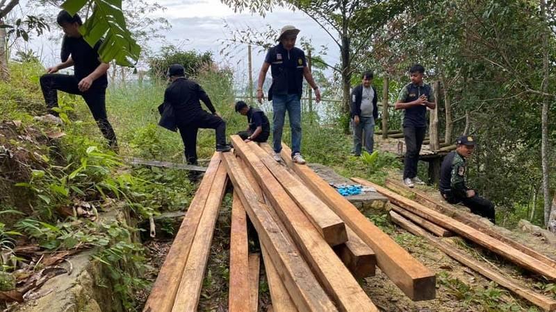Thai teak seized in SorPorKor raid north of Patong