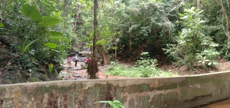 The woman's body was found in a creekbed near the Ao Yon Waterfall. Photo: Eakkapop Thongtub